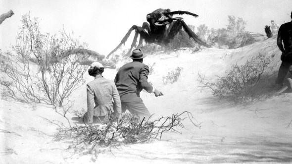 E você reclama do rastrinho de formiga na sua casa?