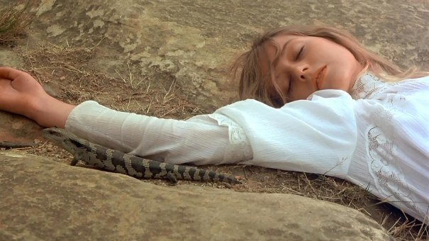 Dormindo com os lagartos