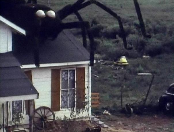 Benhê, tem uma aranha no telhado!