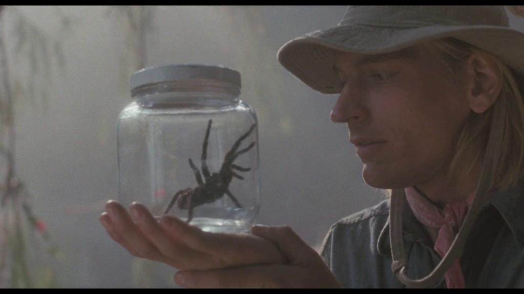 A dona aranha subiu pelo jarro...